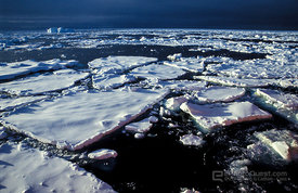 Ice-Floes