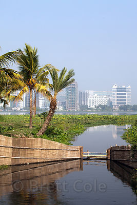 A canal in the East Kolkata wetlands, Kolkata, India. In the distance is the planned satellite city of Salt Lake City.
