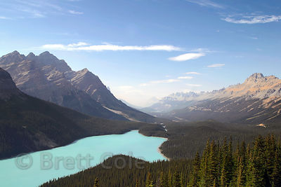 Wide view of Peyto Lake, Banff NP, Canadian Rockies.