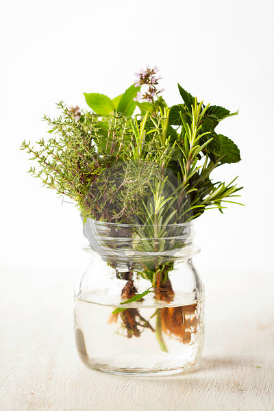 Fresh italian herbs in water on rustic background