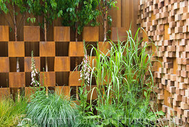 Betula trees growing through a wall created from alternating corten steel boxes and irregular wooden blocks with planting of ...