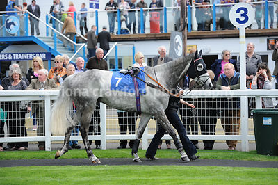 The Ladies Day 25 June Maiden Hurdle Race (Class 5)