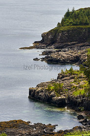 The rocky shoreline of Loch Bracadale near Dunvegan on the Isle of Skye, Scotland, UK.