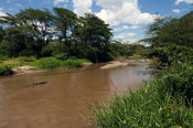 Ntungwe river, Ishasha sector in Queen Elizabeth National Park, Uganda