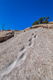 Footholds at Tsankawi in Bandelier National Monument