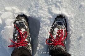 Snow boots with red laces submerged in snow.