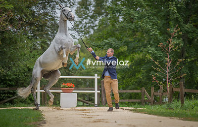 [Equissima] CIC2*: Inspection | 31.08.2017