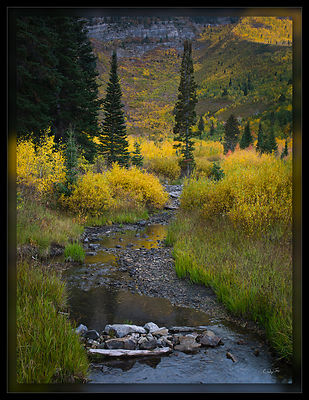 081003_Timp_Fall_CF000137-Edit_PD