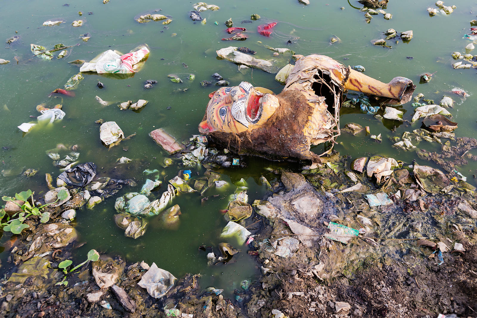 Polluted Water of the Yamuna and Religious Flotsam