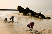Mozambique, Beira, shipwrecks lie along Beira's waterfront.