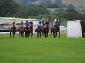 Wed 21st Aug 2013 Handicap Hurdle with winner William Percival