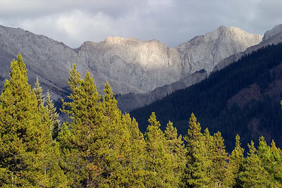 Late light on peaks in the Bow Valley from Moose Meadows, Banff NP, Canadian Rockies.