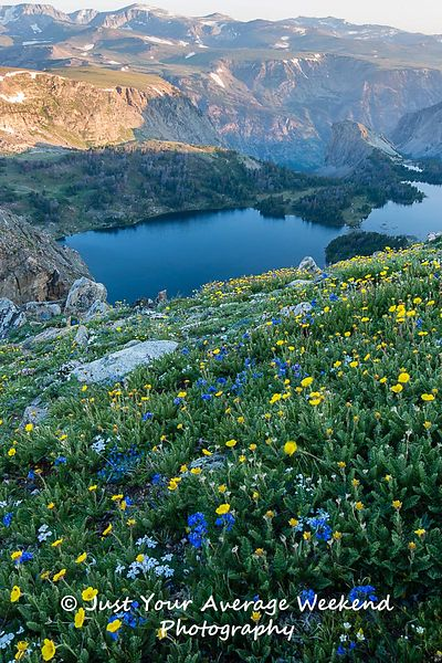The beartooth mountains are home to hundreds of high alpine lakes. We got up early to catch sunrise near the pass and weren't...