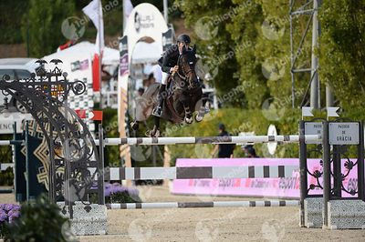 Leopold VAN ASTEN ,(NED), VDL GROEP ZIDANE during Longines Cup of the City of Barcelona competition at CSIO5* Barcelona at Re...