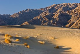 Dunes at Stovepipe Wells