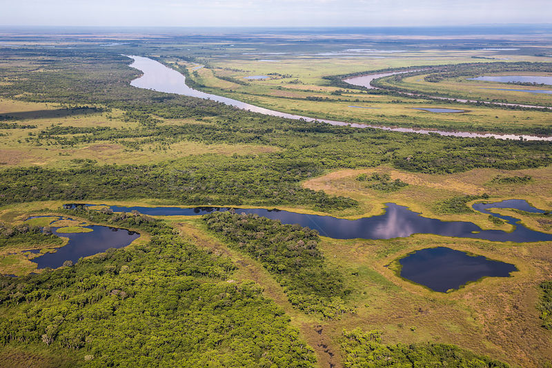 Aerial view of the Pantanal, at the end of the dry season, area of the Rio Paraguay, Brazil.