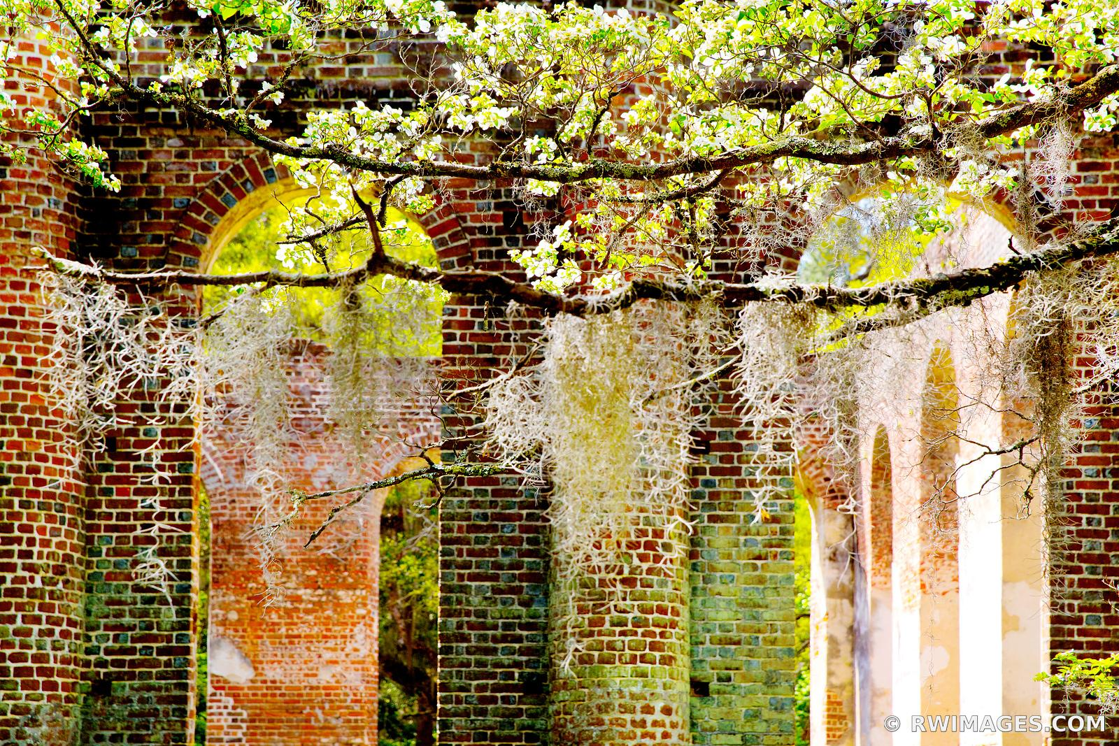 OLD SHELDON CHURCH RUINS NEAR BEAUFORT SOUTH CAROLINA