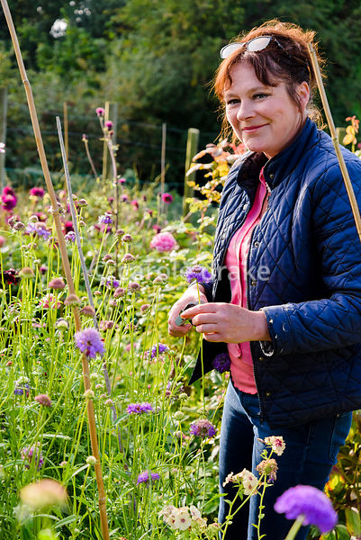 Jane Edmonds in her flower field in August