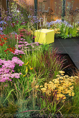 The Colour Box garden at the RHS Hampton Court Flower Show 2017. Designers: Charlie Bloom and Simon Webster. Sponsors: Stark ...