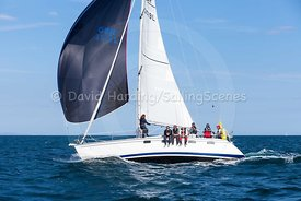 Maris Otter, GBR3519L, Legend 35.5, 20160731880
