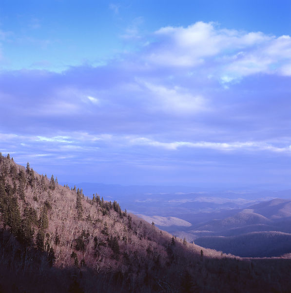 019-Blue_Ridge_D145173_Blue_Ridge_In_Early_Spring_024_Preview