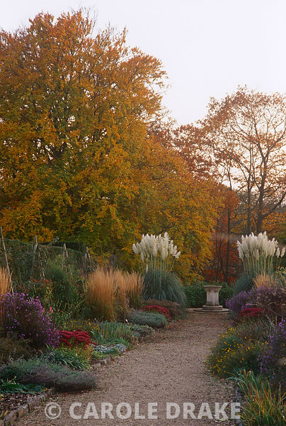 Double herbaceous borders punctuated by asters, sedums and the buff flowerheads of Calamagrostis 'Karl Foerster' in autumn at...