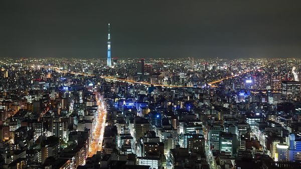 Bird's Eye: A Sea of Buildings & Streets Surrounding Tokyo Skytree at Night