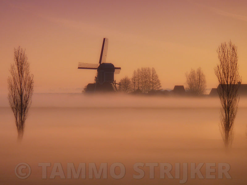 http://www.gettyimages.nl/detail/foto/windmill-at-misty-sunrise-royalty-free-beeld/121690781