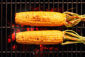 Whole Corn on grill with coal fire