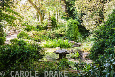 The Japanese garden. Iford Manor, Bradford-on-Avon, Wiltshire