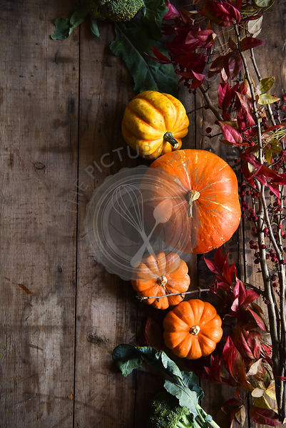 Autumn Pumpkins on a rustic wooden board