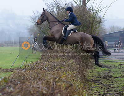 Emma Harrison jumping a hedge at Town Park Farm