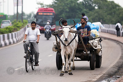 The diversity of transportation in India. A bicyclist, ox cart, motorcycle, and bus share the road near the Delhi Railway Sta...