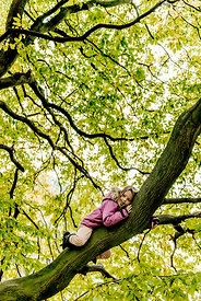 Younger Nordic girl in a tree 2