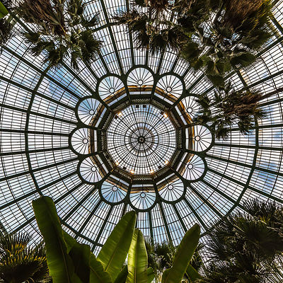 Winter garden, Royal Greenhouses of Laeken, Brussels