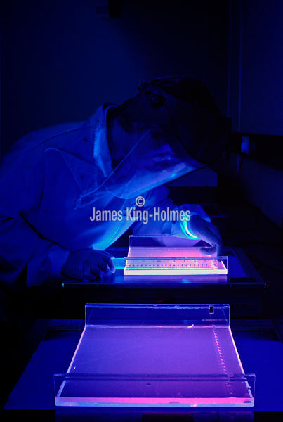 DNA scientist in UV light