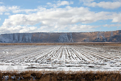 Snow on farm fields in the Tule Lake NWR, California
