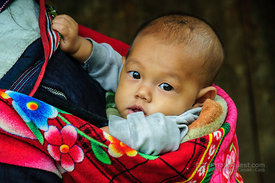 Black Hmong Baby