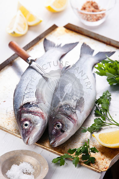 Fresh raw fish sea bass with herbs and lemon on textured background