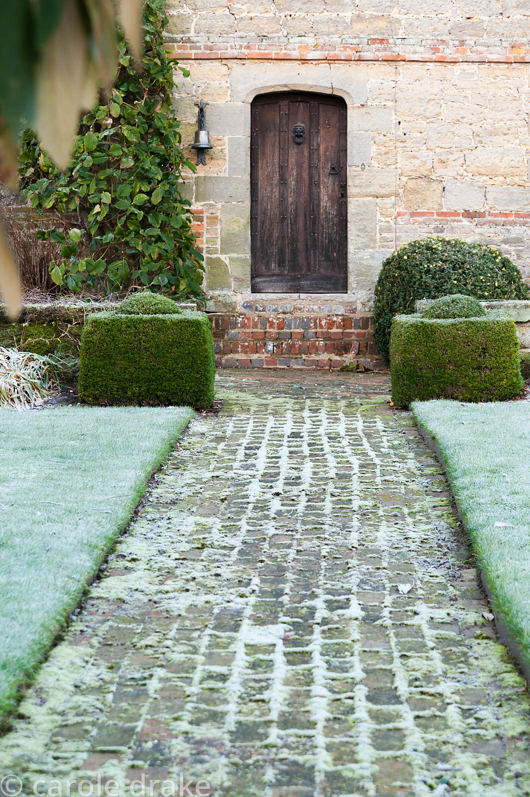 Brick path leads to the front door of the Elizabethan manor house, with clipped box marking the end of the lawn abd Magnolia ...