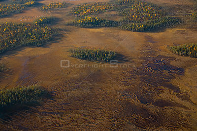 Aerial view of peat wetlands and woodlands, Laponia / Lappland , Finland
