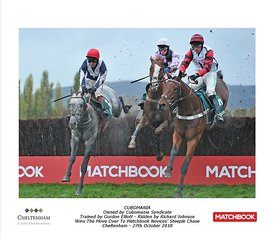 4:55 - The 'Move Over to Matchbook' Novices' Steeple Chase