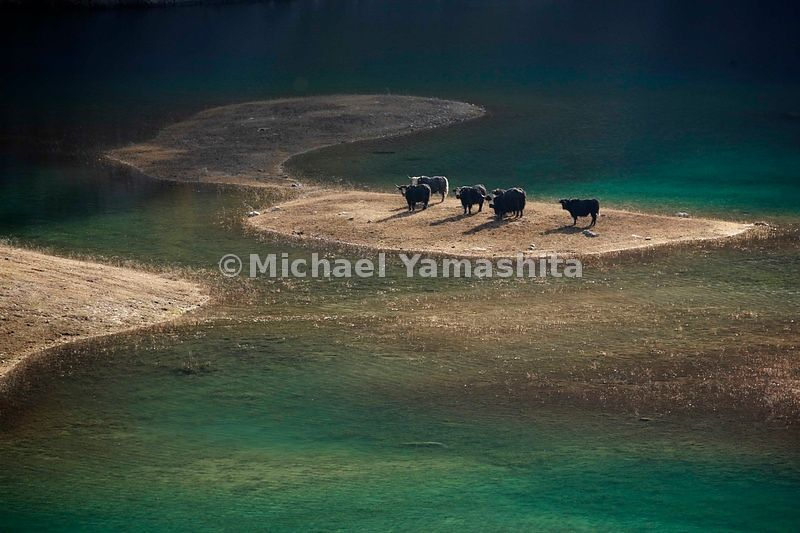 Upper Seasons Lake is a mythic hiding place of fire-breathing monsters. It's also a watering hole for yaks tended by the Tibe...