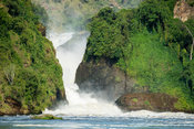 Murchison Falls on the Victoria Nile, Murchison Falls National Park, Uganda