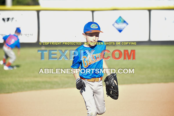05-06-16_BB_LL_DIX_Farm_Wildcats_v_Gators_BR_523