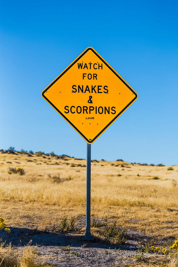 Watch  for Snakes and Scorpions at a Utah Rest Area