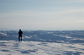 One man standing in the snow during winter at Big Horn Basin.