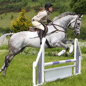 9th June Deer Park Show - Show Jumping