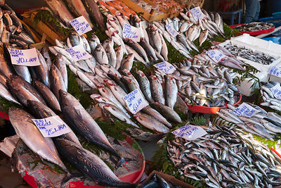 Turkey, Istanbul, Variety of fish at Karakoy  fish market