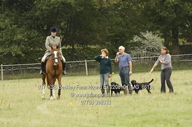 2010-08-22 Beckley Farm Hound Exercise